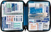 All-Purpose First Aid Essentials Kit (299 Pieces)